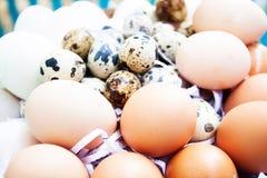 Αυγά στο υπόβαθρο αυγών Στοκ Φωτογραφία