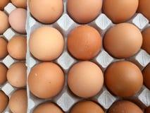 Αυγά στο χαρτοκιβώτιο - τοπ επισκόπηση Στοκ Εικόνες