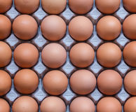 Αυγά στο χαρτοκιβώτιο χαρτονιού αφηρημένη ανασκόπηση Στοκ Εικόνες