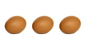 αυγά τρία Στοκ Εικόνες
