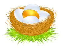 αυγά χρυσά Στοκ Φωτογραφίες