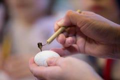 αυγά χρωμάτων στοκ εικόνα με δικαίωμα ελεύθερης χρήσης