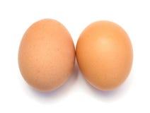 αυγά δύο κοτόπουλου Στοκ Φωτογραφία