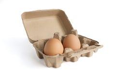 αυγά δύο χαρτοκιβωτίων Στοκ Φωτογραφία