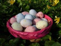 αυγά 1 Στοκ εικόνες με δικαίωμα ελεύθερης χρήσης