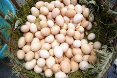 αυγά Στοκ Φωτογραφίες