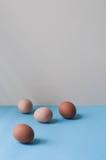 Αυγά Στοκ φωτογραφία με δικαίωμα ελεύθερης χρήσης