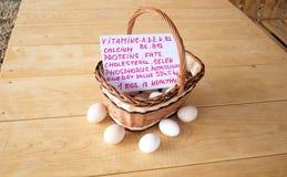 4 αυγά Στοκ φωτογραφία με δικαίωμα ελεύθερης χρήσης