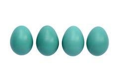 αυγά Robin Στοκ Εικόνα