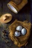 Αυγά sackcloth στοκ εικόνα