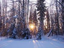 Αυγή ήλιων, ο ηλιακός δίσκος Στοκ εικόνα με δικαίωμα ελεύθερης χρήσης