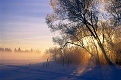 αυγή 2 Στοκ Εικόνες