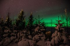 Αυγή Borealis/βόρεια φω'τα επάνω από το ισλανδικό χιονισμένο δάσος στοκ φωτογραφία