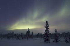 Αυγή Borealis, Raattama, 2014 02 21 - 36 Στοκ φωτογραφία με δικαίωμα ελεύθερης χρήσης