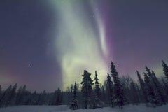 Αυγή Borealis, Raattama, 2014 02 21 - 06 Στοκ Φωτογραφίες