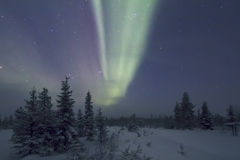 Αυγή Borealis, Raattama, 2014 02 21 - 07 Στοκ εικόνες με δικαίωμα ελεύθερης χρήσης