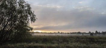 αυγή misty Στοκ Εικόνες