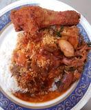 15 Αυγούστου 2016, Penang Το δημοφιλές Nasi Kandar Στοκ Εικόνες