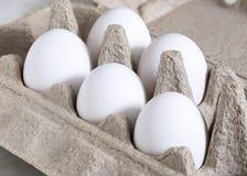 Αυγό, άσπρα αυγά κοτών Στοκ Φωτογραφία