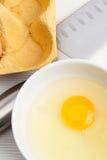 αυγό ακατέργαστο Στοκ εικόνες με δικαίωμα ελεύθερης χρήσης