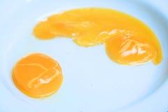 αυγό ακατέργαστο Στοκ φωτογραφία με δικαίωμα ελεύθερης χρήσης