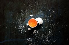 αυγό ακατέργαστο Στοκ φωτογραφίες με δικαίωμα ελεύθερης χρήσης