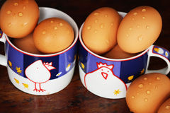 Αυγό από το κοτόπουλο Στοκ φωτογραφία με δικαίωμα ελεύθερης χρήσης