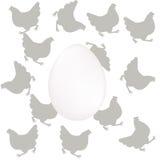 Αυγό και γκρίζοι κόκκορες Στοκ εικόνες με δικαίωμα ελεύθερης χρήσης