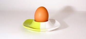 αυγό κοτόπουλου μεγάλ&omic Στοκ Εικόνες