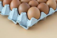 Αυγό κοτόπουλου στο δίσκο Στοκ Φωτογραφία