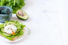 Αυγό-λαθραίος με τα φύλλα μαρουλιού ciabatta, αβοκάντο και μωρών Στοκ Φωτογραφία