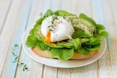 Αυγό-λαθραίος με τα φύλλα μαρουλιού ciabatta, αβοκάντο και μωρών Στοκ Εικόνες