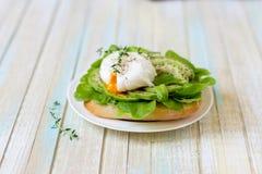 Αυγό-λαθραίος με τα φύλλα μαρουλιού ciabatta, αβοκάντο και μωρών Στοκ φωτογραφία με δικαίωμα ελεύθερης χρήσης