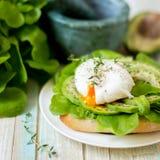 Αυγό-λαθραίος με τα φύλλα μαρουλιού ciabatta, αβοκάντο και μωρών Στοκ εικόνα με δικαίωμα ελεύθερης χρήσης