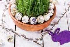 Αυγό ορτυκιών στη χλόη Στοκ Εικόνες