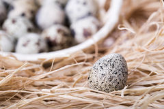 Αυγό ορτυκιών στο άχυρο με το καλάθι στο υπόβαθρο Στοκ εικόνα με δικαίωμα ελεύθερης χρήσης