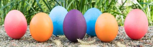 Αυγό Πάσχας! ευτυχή ζωηρόχρωμα υπόβαθρα έννοιας Πάσχας διακοσμήσεων διακοπών κυνηγιού της Κυριακής Πάσχας με το διάστημα αντιγράφ Στοκ Εικόνες