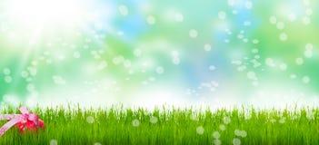 Αυγό Πάσχας, λιβάδι Πάσχας, Bokeh Στοκ φωτογραφία με δικαίωμα ελεύθερης χρήσης