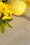 αυγό Πάσχας κίτρινο Στοκ Φωτογραφία