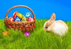 Αυγό Πάσχας και bunny στο καλάθι Στοκ φωτογραφία με δικαίωμα ελεύθερης χρήσης