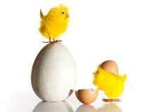αυγό Πάσχας κοτόπουλων Στοκ φωτογραφία με δικαίωμα ελεύθερης χρήσης