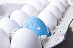αυγό Πάσχας που κρύβεται Στοκ εικόνες με δικαίωμα ελεύθερης χρήσης