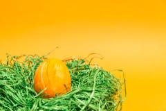 Αυγό Πάσχας σε μια φωλιά Πάσχας φιαγμένη από πράσινη χλόη και κίτρινο υπόβαθρο Στοκ φωτογραφία με δικαίωμα ελεύθερης χρήσης