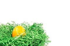 Αυγό Πάσχας σε μια φωλιά Πάσχας φιαγμένη από πράσινη χλόη και κίτρινο υπόβαθρο Στοκ εικόνες με δικαίωμα ελεύθερης χρήσης
