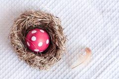 Αυγό Πάσχας στη φωλιά πουλιών στο ελεγμένο άσπρο υπόβαθρο Στοκ Εικόνες