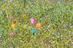 Αυγό Πάσχας στη χλόη με τα όμορφα λουλούδια Στοκ φωτογραφίες με δικαίωμα ελεύθερης χρήσης