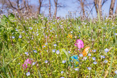 Αυγό Πάσχας στη χλόη με τα όμορφα λουλούδια Στοκ Εικόνα