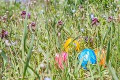 Αυγό Πάσχας στη χλόη με τα όμορφα λουλούδια Στοκ φωτογραφία με δικαίωμα ελεύθερης χρήσης