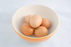 Αυγό πέντε κοτόπουλου στοκ εικόνα με δικαίωμα ελεύθερης χρήσης