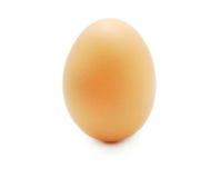 αυγό που απομονώνεται Στοκ φωτογραφία με δικαίωμα ελεύθερης χρήσης